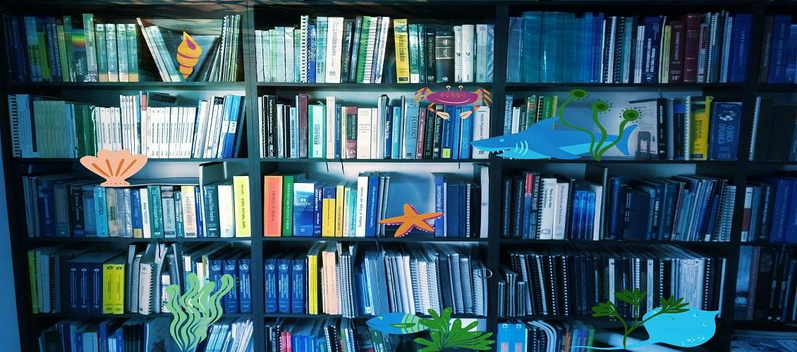 Foto biblioteca4